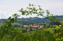 Villaggio di Brebu dalla Romania Immagini Stock Libere da Diritti