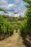 Villaggio di Ceglo, anche Zegla in di regione viticola sloveno famoso della vista di Goriska Brda attraverso le vigne ed i frutte fotografia stock