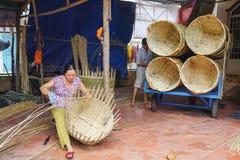 Villaggio di commercio dell'Asia al delta del Mekong Fotografia Stock Libera da Diritti