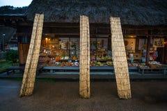 Villaggio di Gokayama Fotografia Stock Libera da Diritti