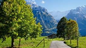 Villaggio di Grindelwald, Svizzera Immagine Stock Libera da Diritti