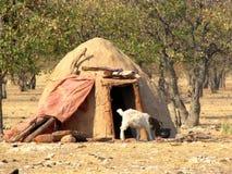 Villaggio di Himba Immagine Stock