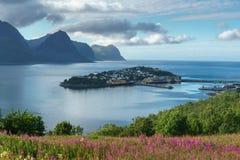 Villaggio di Husoy, isole di Lofoten, città sull'isola Fotografia Stock