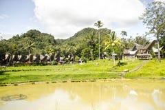 Villaggio di Kete Kesu Immagine Stock