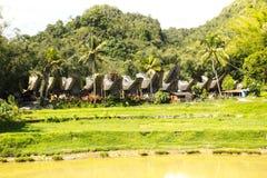 Villaggio di Kete Kesu Immagini Stock