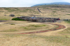 Villaggio di Maasai nel cespuglio Immagine Stock Libera da Diritti