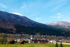 Villaggio di Norvegian Fotografia Stock
