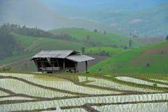 Villaggio di Papongpiang Immagini Stock Libere da Diritti