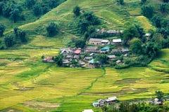 Villaggio di Tavan sul giacimento del riso a terrazze in montagna della valle a Sapa Fotografia Stock Libera da Diritti