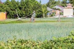 Villaggio di Tra Que, provincia di Quang Nam, Vietnam Fotografia Stock