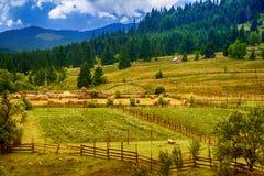 Villaggio di Transylvanian con il cielo nuvoloso di estate Fotografie Stock Libere da Diritti