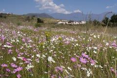Villaggio in Drakensberg al giorno, Sudafrica Immagini Stock Libere da Diritti