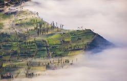 Villaggio e scogliera al vulcano di Bromo in Tengger Semeru, Java, Indo fotografia stock
