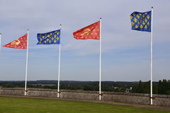 Villaggio ed il fiume Loira, valle di Louire - Europa, Francia, colpo castello da Amboise, Amboise, il d Amboise, castello del ca Immagini Stock