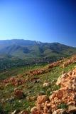 Villaggio fra le colline Immagini Stock
