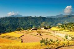 Villaggio Himalayan Fotografie Stock Libere da Diritti