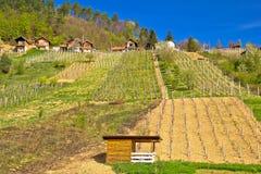 Villaggio idilliaco di Prigorec vicino a Ivanscica, Zagorje, Croazia delle vigne della montagna Immagine Stock