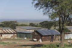 Villaggio keniano Fotografie Stock