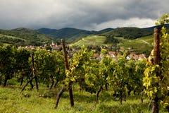 Villaggio l'Alsazia del vino di Andlau Fotografia Stock Libera da Diritti