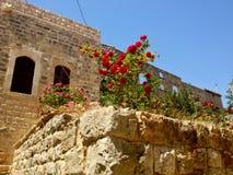 Villaggio libanese vecchio Dibbiye, supporto Libano Fotografia Stock