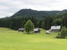 Villaggio medievale della montagna alpina Cottage armati in legno di legno Fotografie Stock Libere da Diritti