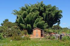 Villaggio nel Madagascar Fotografia Stock Libera da Diritti