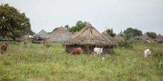 Villaggio nel Sudan del sud Immagini Stock Libere da Diritti