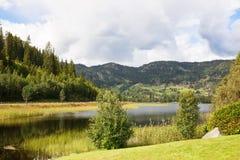Villaggio in Norvegia Fotografie Stock Libere da Diritti