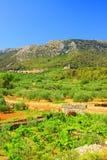 Villaggio Pitve Fotografia Stock Libera da Diritti