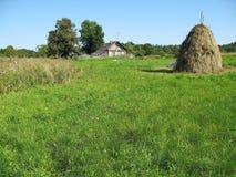 Villaggio, prato, hayfield Fotografia Stock