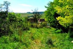 Villaggio Rotbav-Rothbach, la Transilvania, Romania Fotografie Stock