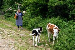 VILLAGGIO ROVENSKO, BANAT RUMENO, maggio 2009 - donna non identificata che ritorna dal campo Fotografia Stock