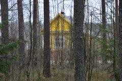 Villaggio russo Immagine Stock Libera da Diritti
