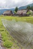 Villaggio storico Gokayama, Giappone Immagine Stock Libera da Diritti