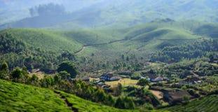 Villaggio sulle piantagioni di tè in India Fotografia Stock Libera da Diritti