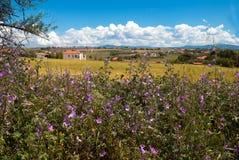 Villaggio tradizionale alla penisola di Halkidiki Fotografia Stock