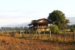 Villaggio tradizionale del ` s dell'agricoltore nel giacimento del riso Immagini Stock