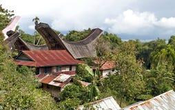 Villaggio tradizionale di Toraja Fotografia Stock