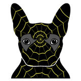 Villain symbol in costume with a spider web, with  in black, yellow,  and gray as French bulldog character Stock Image