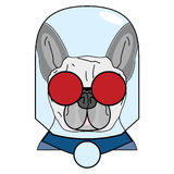 Villain symbol with glass globe, red glasses and cape in red , gray and blue as French bulldog character. On white background Stock Photography