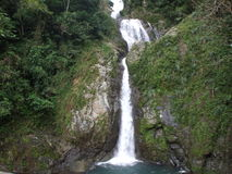 Villalba Puerto Rico Waterfall Royaltyfri Bild