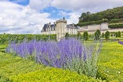 Villandry Castle (Chateau) and gardens. Stock Photos
