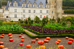 Villandry  castle at fall, France Royalty Free Stock Photo