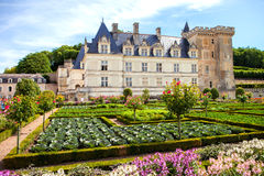 Villandry castle and garden Stock Photography