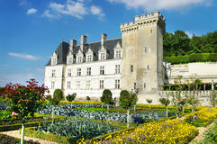 Villandry castle' gardens Royalty Free Stock Photos