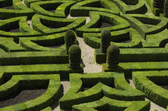 Villandry, formal garden Royalty Free Stock Photos