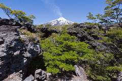 Villarrica Volcano in Chile Royalty Free Stock Image