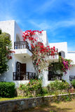 Villas decorated with flowers at luxury hotel Stock Photos