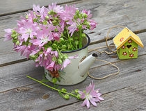 Villatic still life with of pink mallow on a wooden background. Summer still life with a bouquet of pink mallow and birdhouses on a wooden background Stock Images