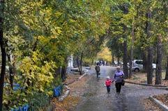 ville Angarsk été 2011 - 81 Photo libre de droits